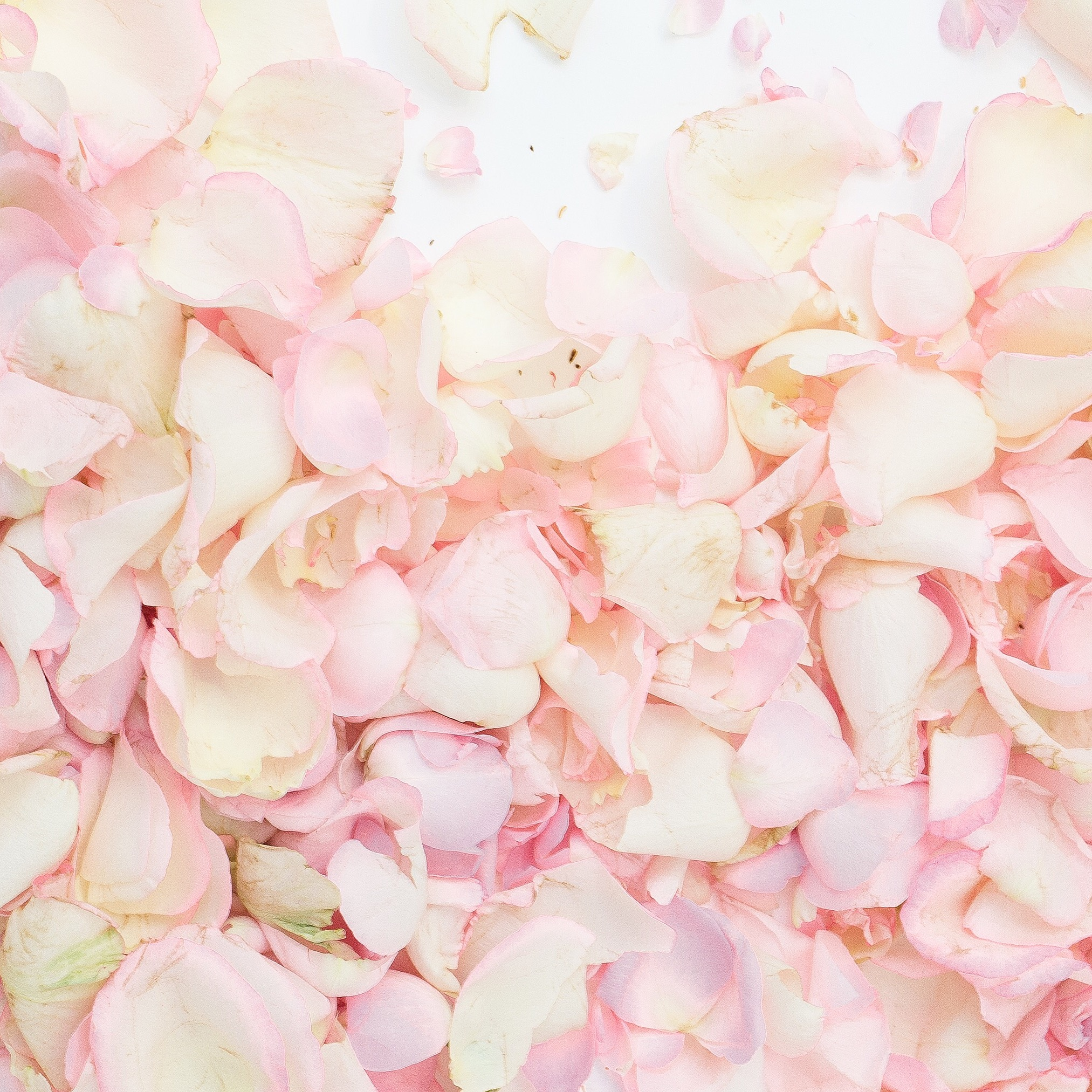 Blooming inspiration